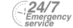 24/7 Emergency Service Pest Control in Kew, North Sheen, TW9. Call Now! 020 8166 9746